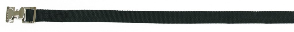 CargoBuckle lashing strap with pinch buckle is displayed.